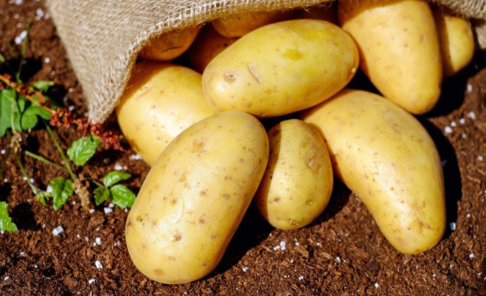 Umidificazione patate